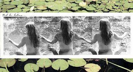 Tel le lotus.jpg