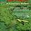 Thumbnail: Las Hoyas: a Cretaceous wetland
