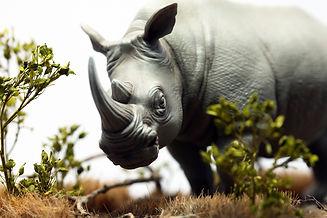 rinoceronte bianco modello in resina