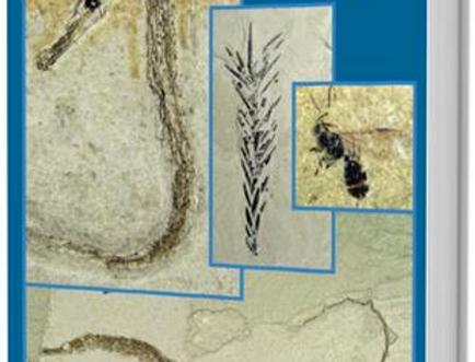 Fossil Seahorses & Other Biota from the Tunjice Konservat-Lagerstätte, Slovenia