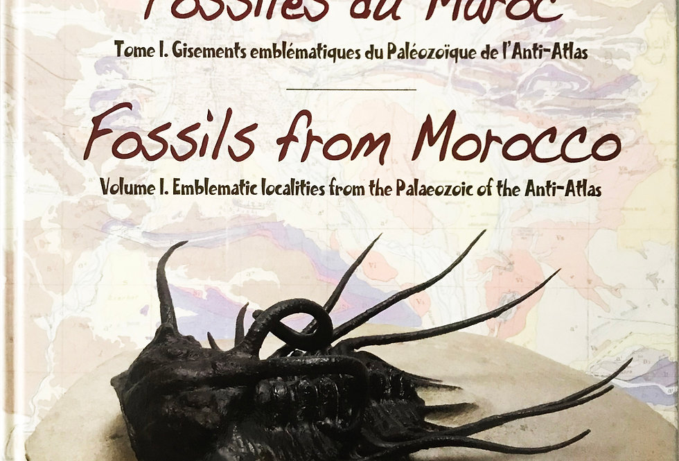 Trilobite Book Fossils from Morocco Volume 1 Gisements Emblématiques