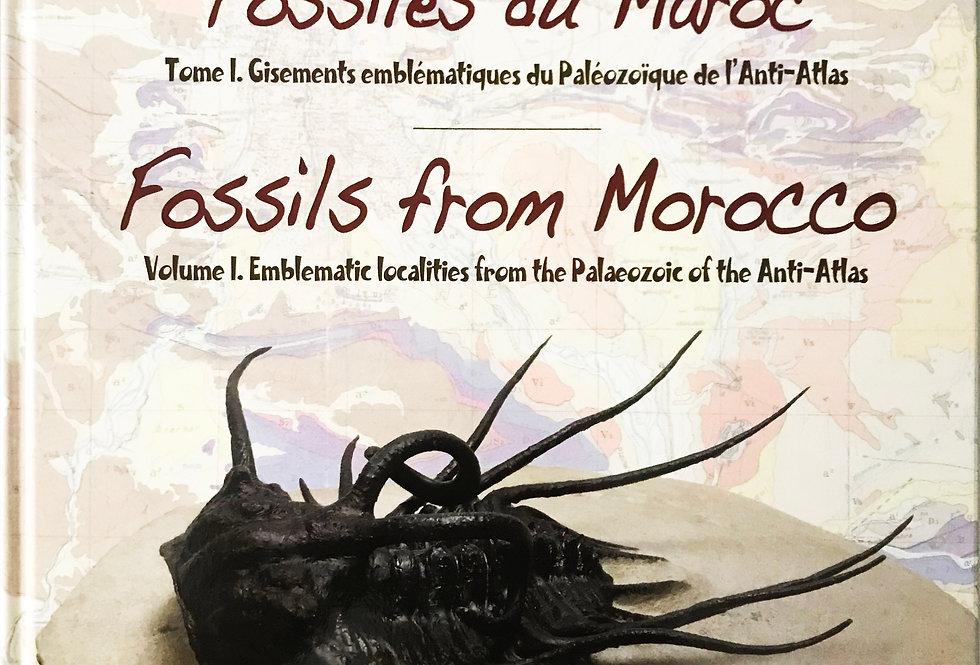 Trilobite Book Fossils from Morocco Volume 1 Gisements Emblématiques