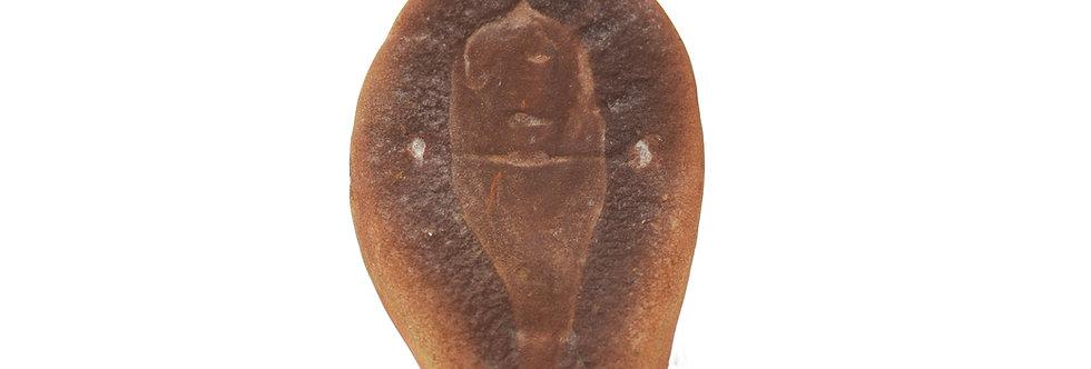 Tullimonstrum gregarium original nodule Mazon Creek