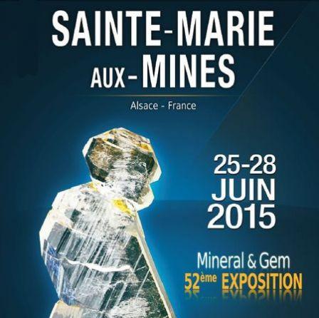 Saint marie fossil show 2015