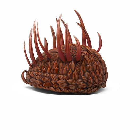 wiwaxia corrugata 3D modello in resina paleontologia fauna del Burgess Shale