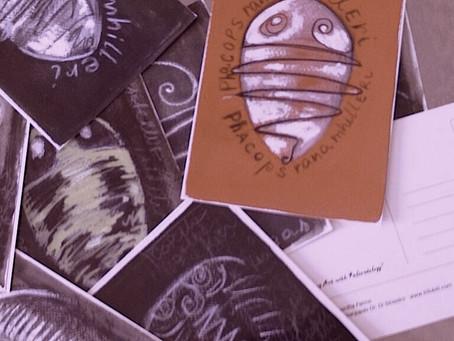 Trilobites collectors postcards available now on Ebay.com!