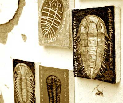 TRILOBITES' WALL ART by Samantha Fermo