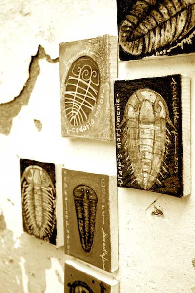 Samantha Fermo trilobites art