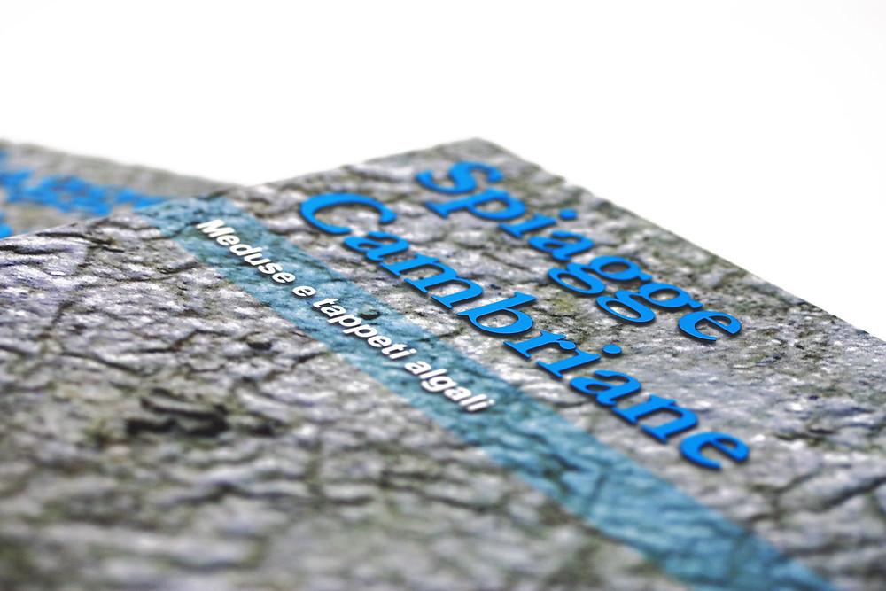 Spiagge Cambriane meduse e tappeti algali Cover Enrico Bonino