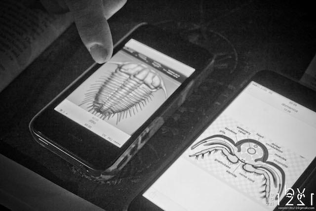 3D Trilobite studio digital art