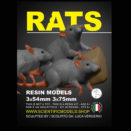 ratto diorama modellismo kit resina scala 54mm