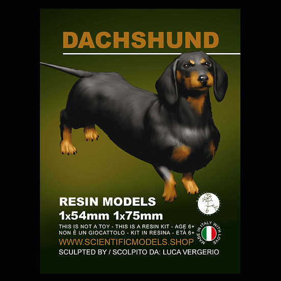 Bassotto Dachshund modellismo modellino replica 54mm resin kit