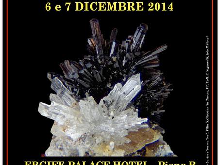 36ª Mostra di Minerali, Fossili e Conchiglie ROMA ERGIFE PALACE HOTEL