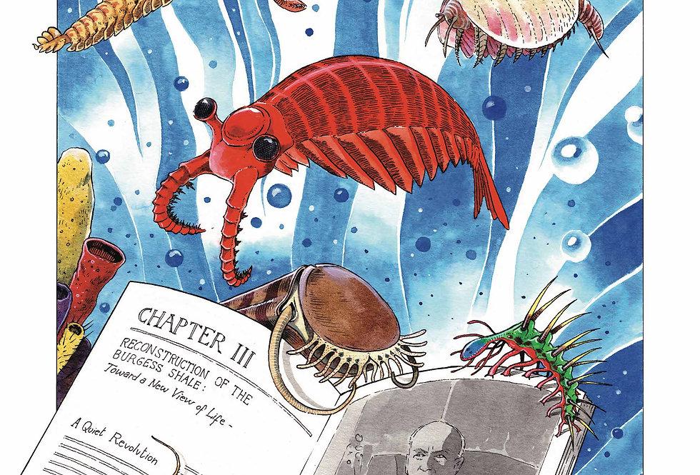 Paper Art Burgess Shale fossil print