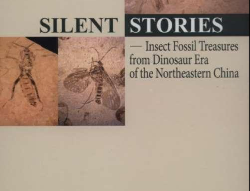 Silent stories - Insect fossil Treasures from Dinosaur Era -