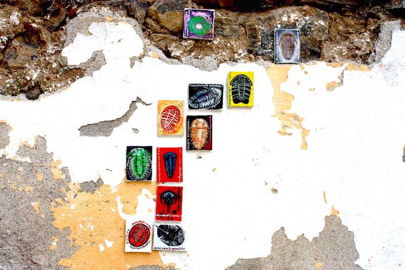 Samantha Fermo trilobites art 6