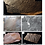 Thumbnail: Beltanelliformis minutae Pre Cambrian fossils