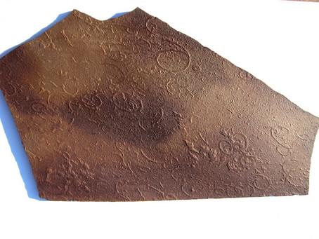E per non parlare solo di Trilobiti: Grypania spiralis il più antico eucariota conosciuto