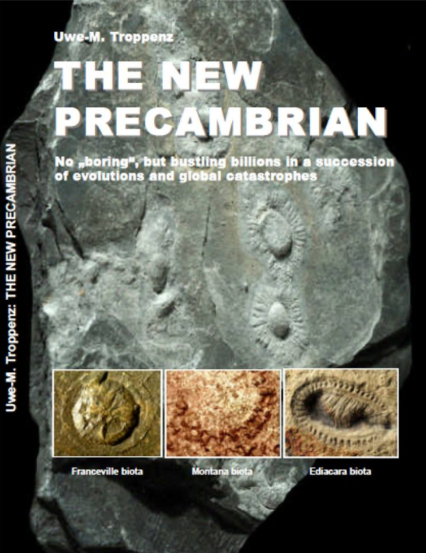 The new precambrian book