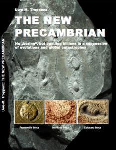 The new precambrian book