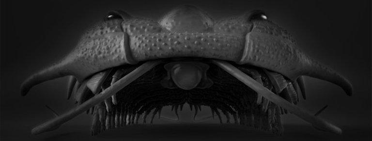 3D Trilobite Poster (Damesella paronai)