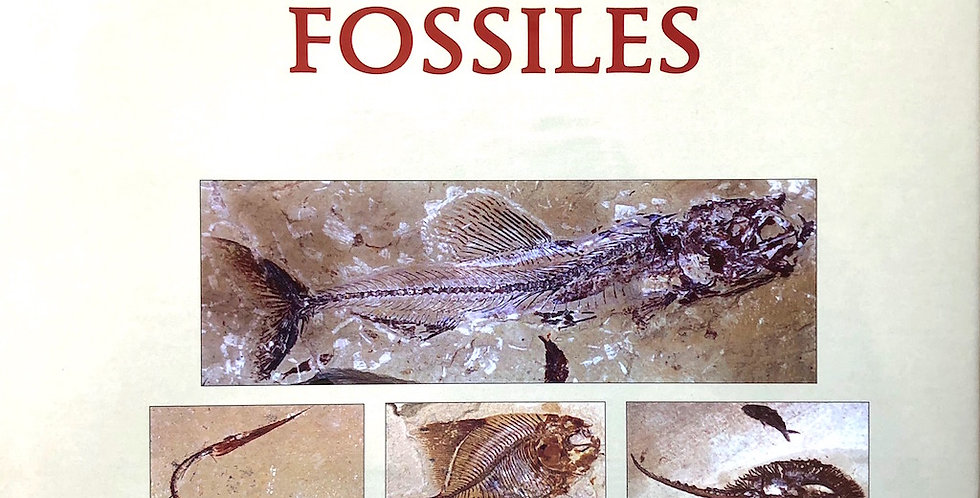 Les Poissons Fossiles lebanon fossil fish book