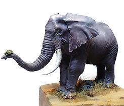Elefante copertina.jpg