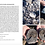 Thumbnail: Fossils of the Whitby Coast: A Photographic Guide