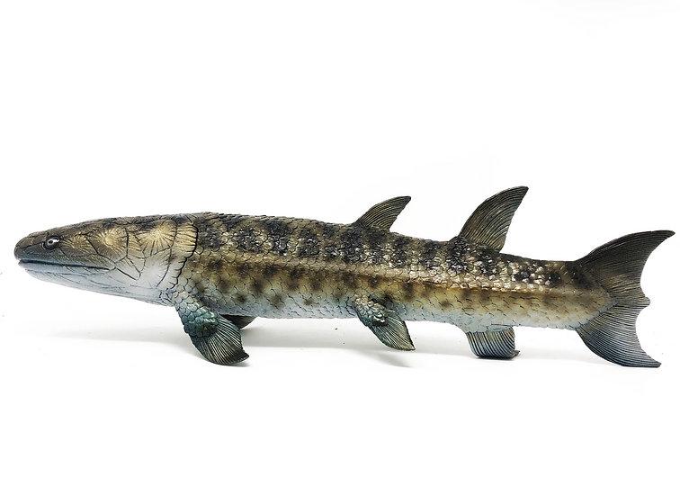 Eusthenopteron sp. modello in scala 1:1 di pesce devoniano primitivo