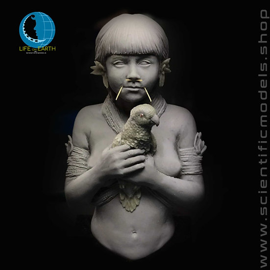 Yanomami resin bust modellismo planet earth series scientificmodels.shop