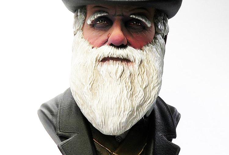 3D model Charles Darwin bust