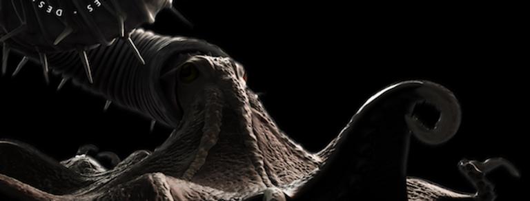 3D Ammonite Poster (Dydimoceras nebrascense)