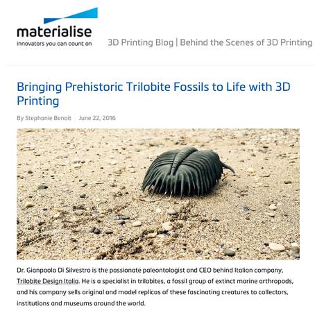 TRILOBITES & 3D INNOVATION ita-eng