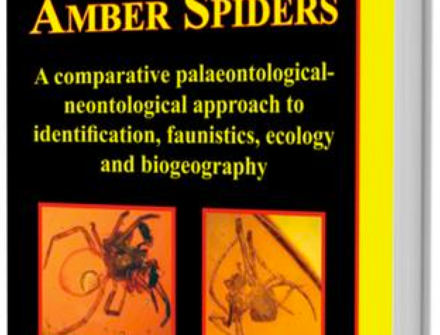 Dominican Amber Spiders