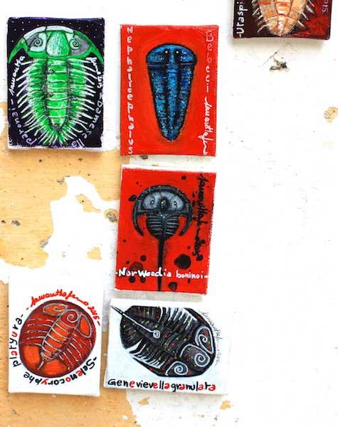 Samantha Fermo trilobites art 4