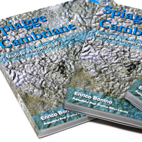 Spiagge Cambriane Meduse e tappeti algali - Il nuovo Libro di Enrico Bonino -