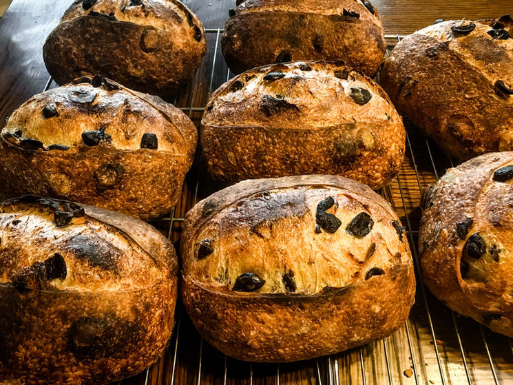 country olive loaves