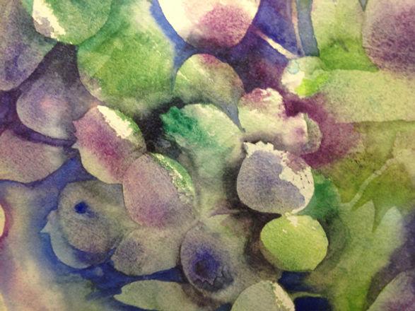 blueberrypie.jpg