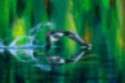 loon, flying loon, loon takeoff, wilderness, northern minnesota, water, abstract, northwind lodge, ely mn, abstract art