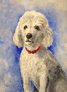 Pet Portrait - Dog named Walter