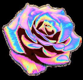 hyperpop y2k flower.png