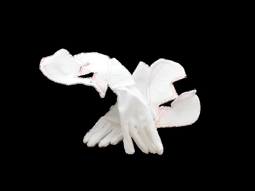 White Gloves 1.png
