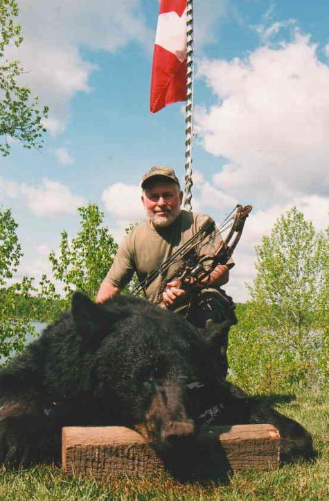 Bears1b.jpg