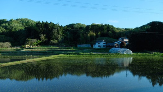 Landscape of Fukushima