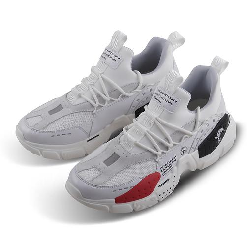 shoe 1.png