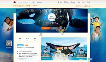 SeaWorld Takes to Chinese Social Media Amid New Orca Shows