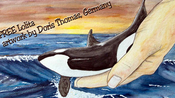 Germany's Doris Thomas: Artist and Writer for Cetacean Freedom