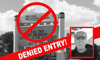Things are Heating Up in Miami Before The Miracle March for Lolita