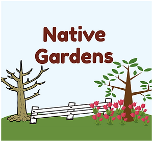 NATIVE GARDENS square-01.png