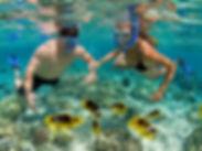 Isla Catalina Tours Snorkel Punta Cana Bayahibe Dominicana Tours
